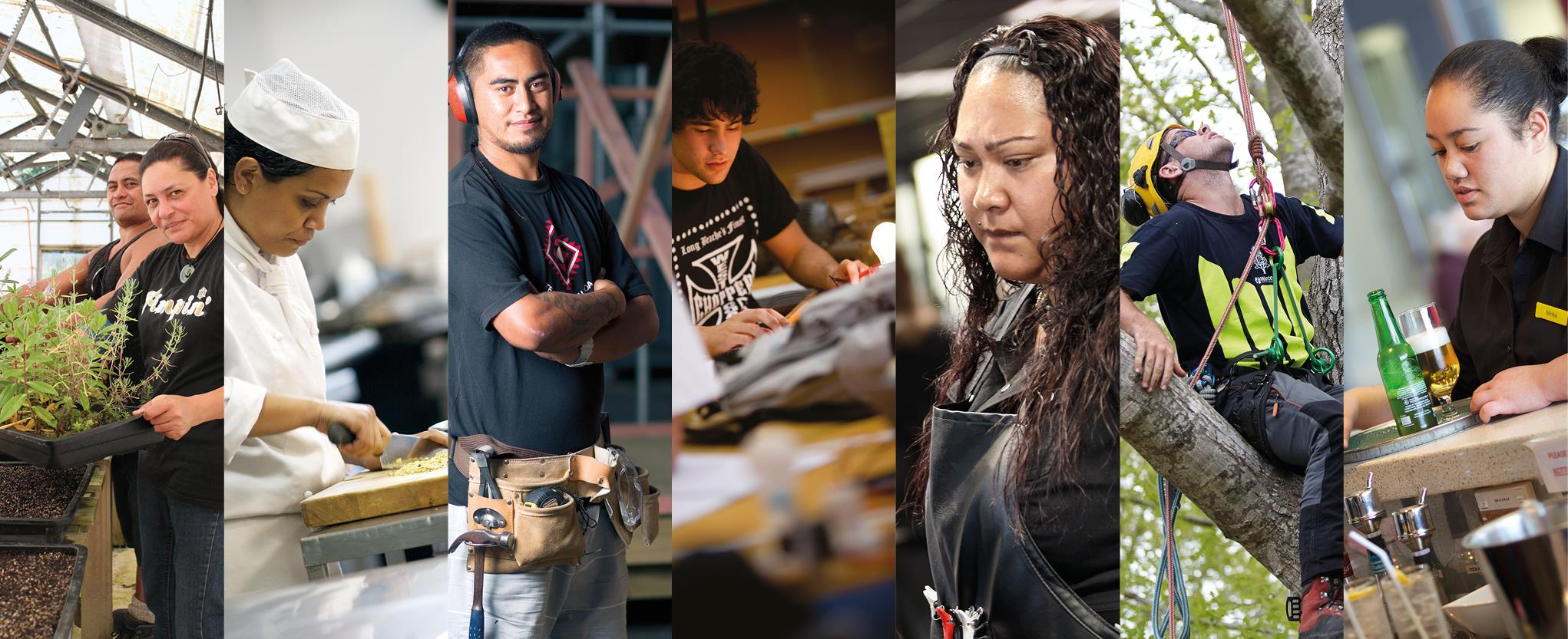 Maori and Pasifika Trades Training options