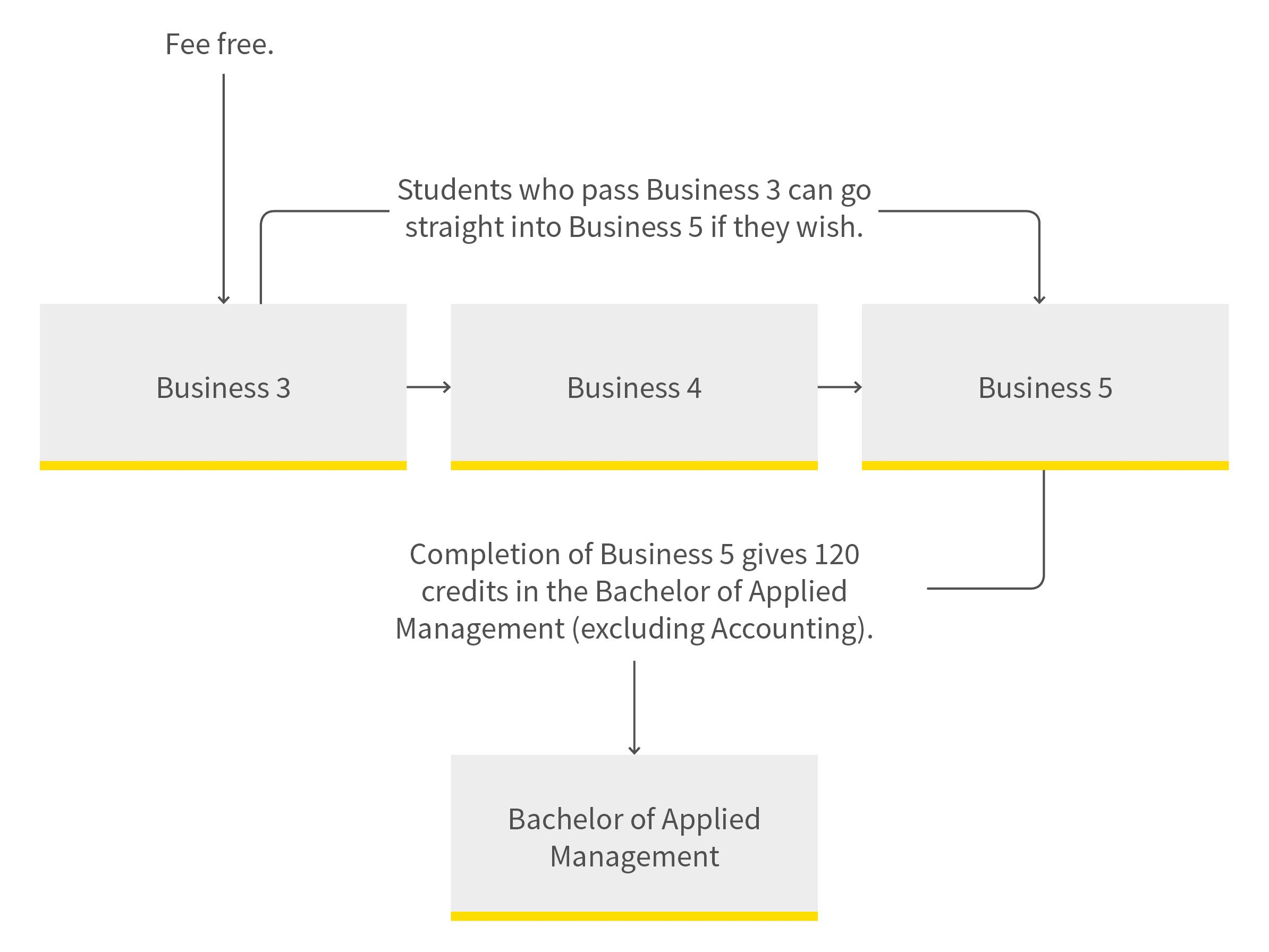 Business administration pathway diagram