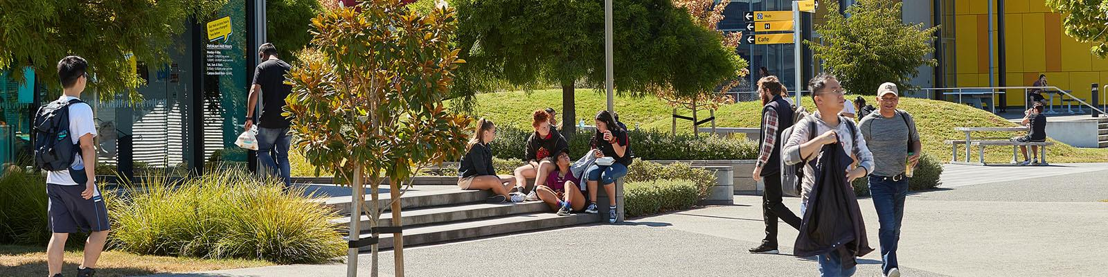 Students seated outside at Rotokauri Campus