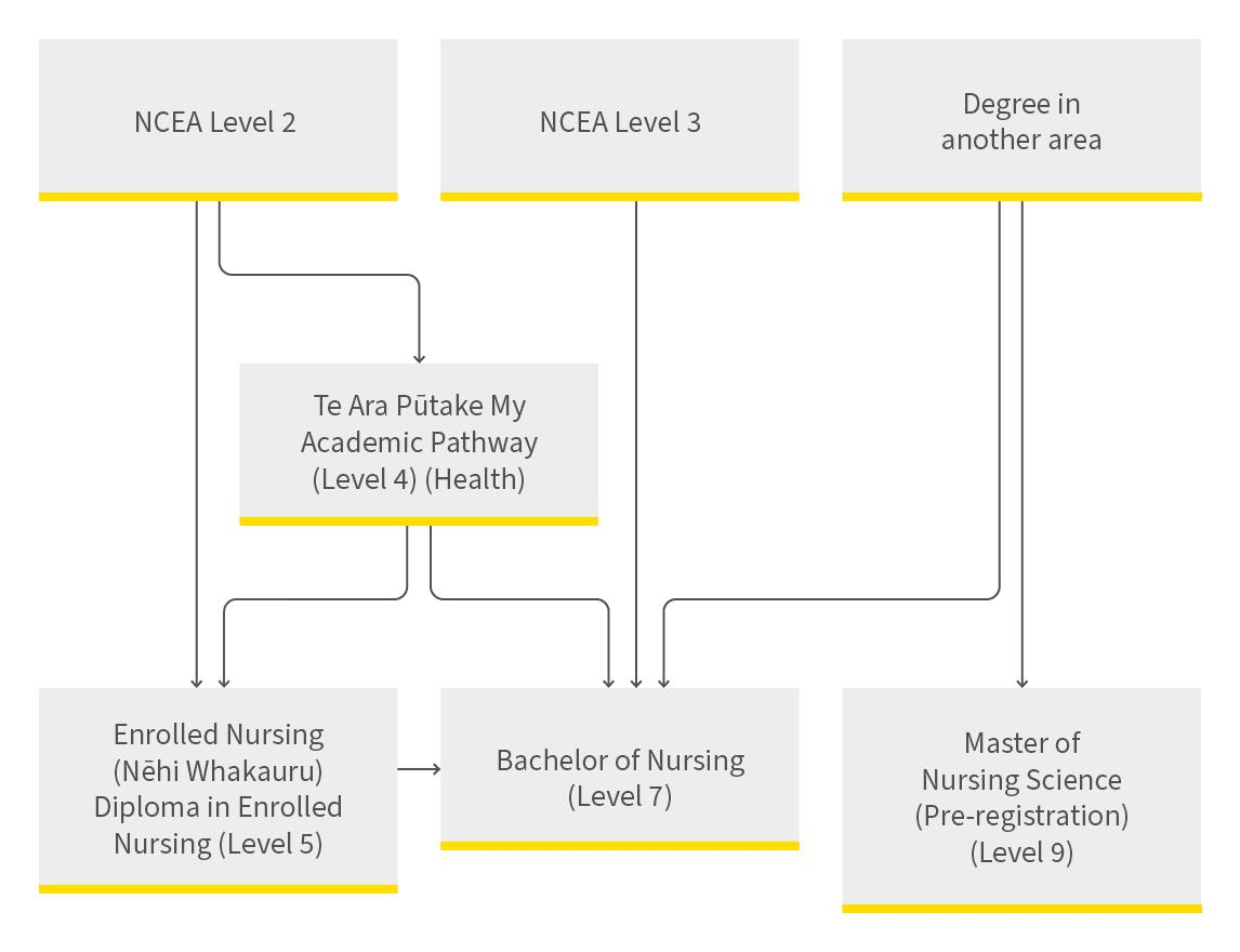 Entry to Nursing Pathway