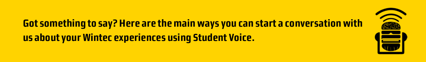 how to give feedback using student voice