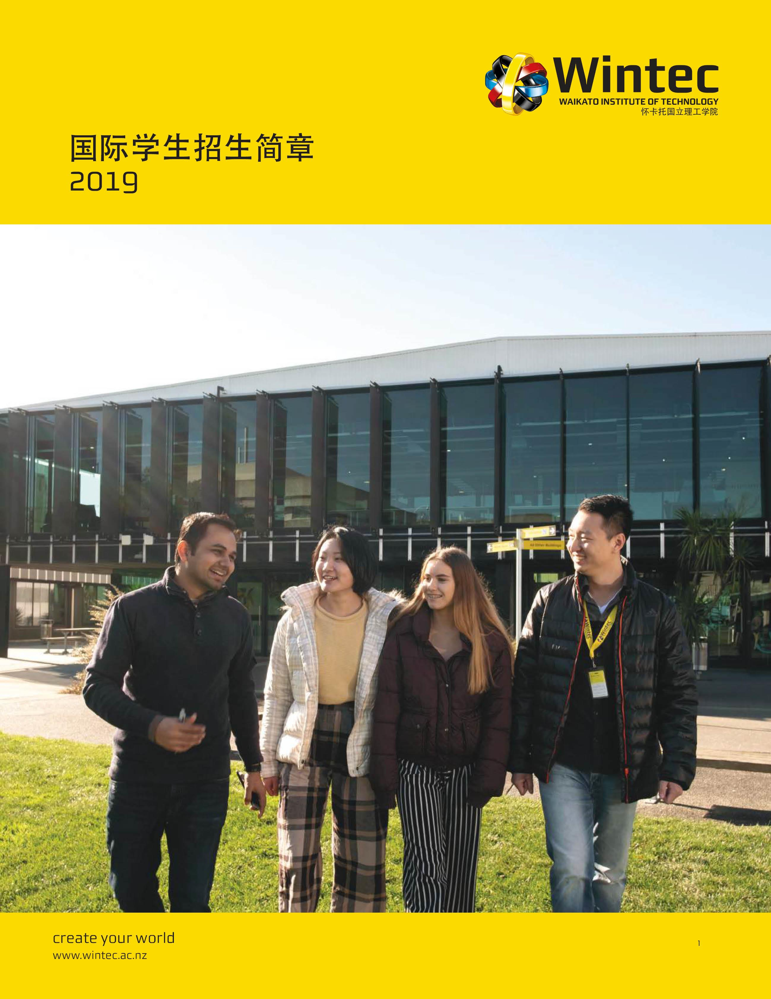 2019 Chinese International Prospectus