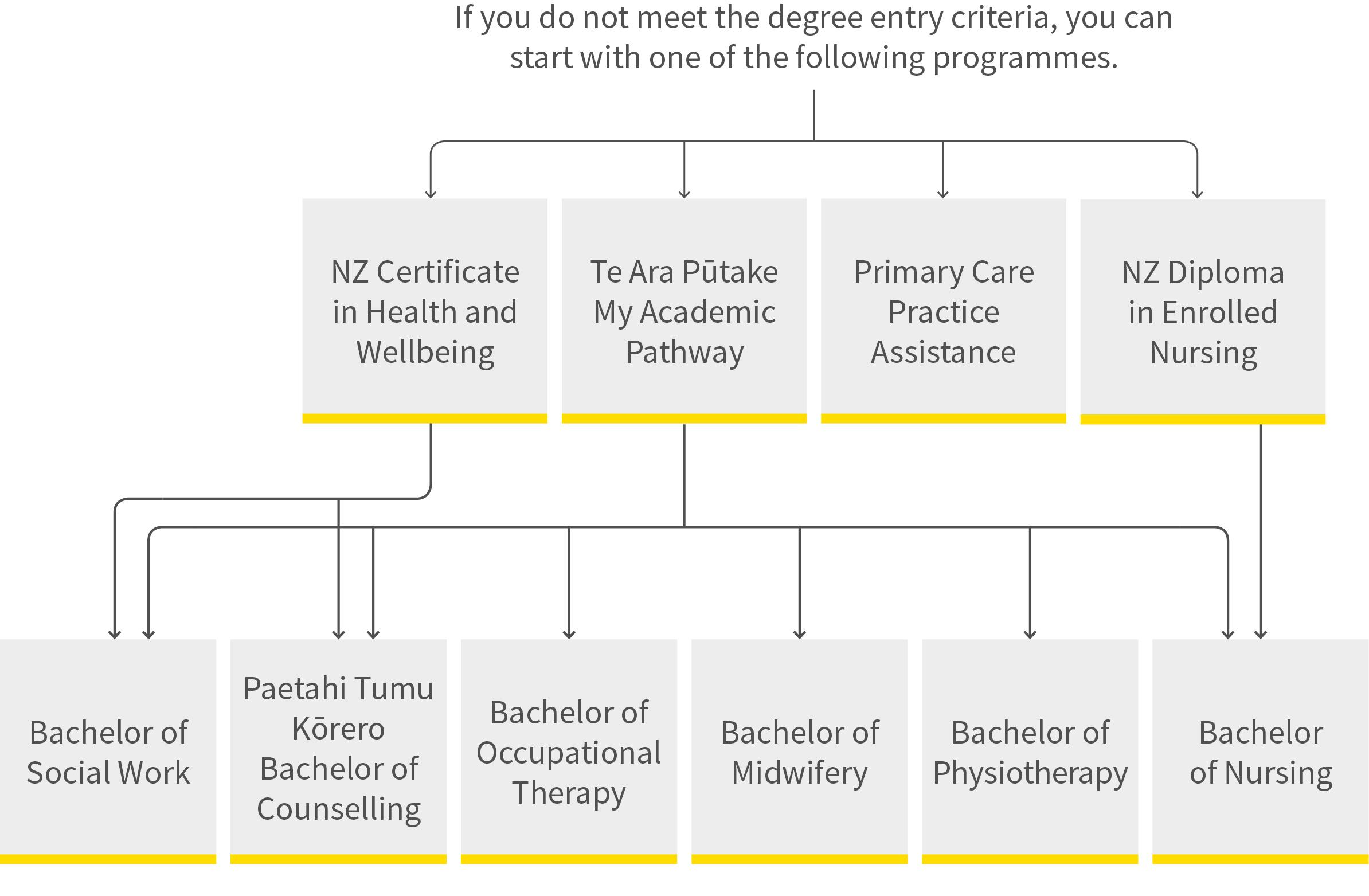 Health and social practice pathway diagram