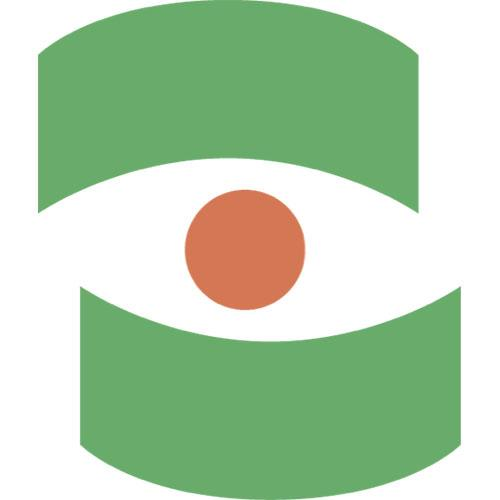 Design factory icon eye