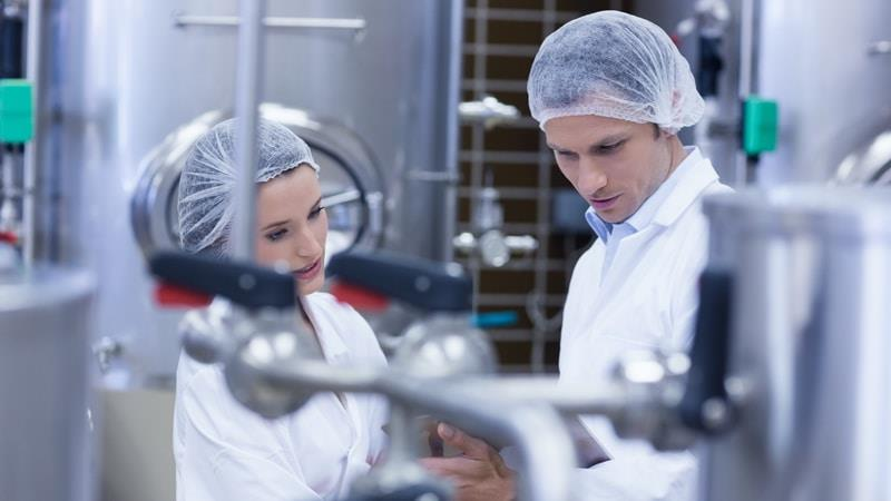 Dairy processing professionals working in dairy factory