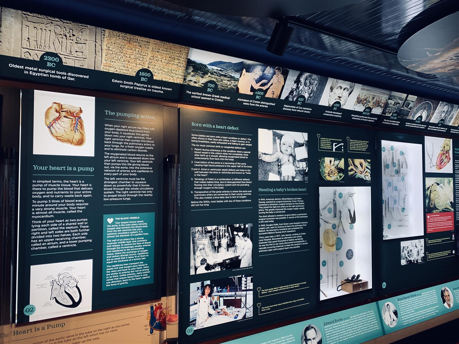 Inside Brave Hearts exhibition